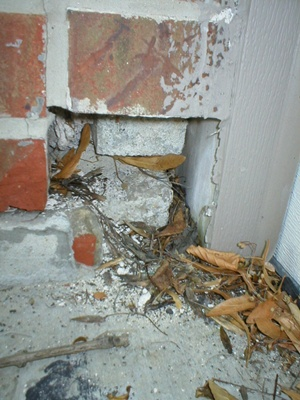 Channahon home inspector reveals damaged exterior wall